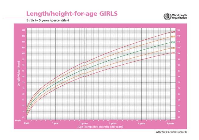 4 dấu hiệu báo động về chiều cao của trẻ, bố mẹ cần biết để điều chỉnh - ảnh 2