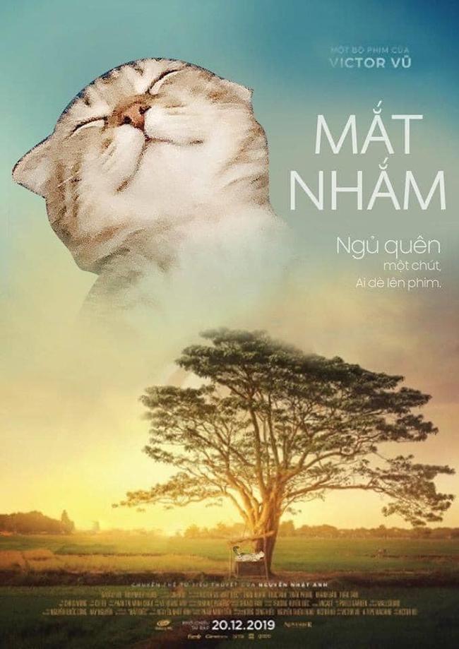 Vừa chợp mắt, mèo xám đã trở thành diễn viên Hollywood bất đắc dĩ, dáng ngủ tơ hơ của