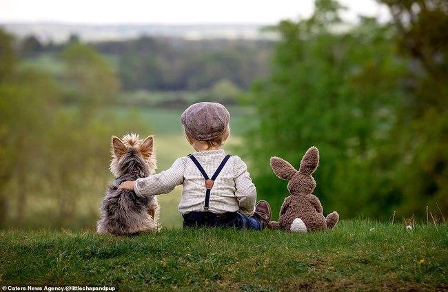 Tan chảy với những hình ảnh siêu cấp đáng yêu giữa cậu bé 2 tuổi và chú chó cưng - Ảnh 17.