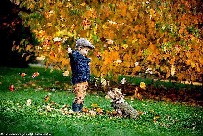 Tan chảy với những hình ảnh siêu cấp đáng yêu giữa cậu bé 2 tuổi và chú chó cưng - Ảnh 19.