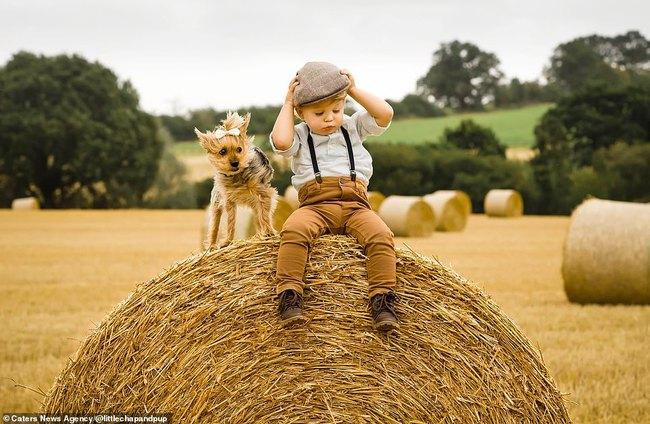 Tan chảy với những hình ảnh siêu cấp đáng yêu giữa cậu bé 2 tuổi và chú chó cưng - Ảnh 9.