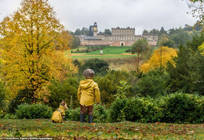 Tan chảy với những hình ảnh siêu cấp đáng yêu giữa cậu bé 2 tuổi và chú chó cưng - Ảnh 6.