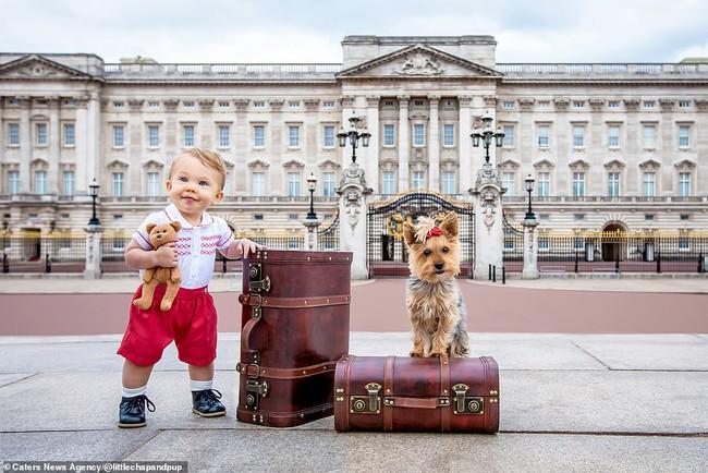 Tan chảy với những hình ảnh siêu cấp đáng yêu giữa cậu bé 2 tuổi và chú chó cưng - Ảnh 23.