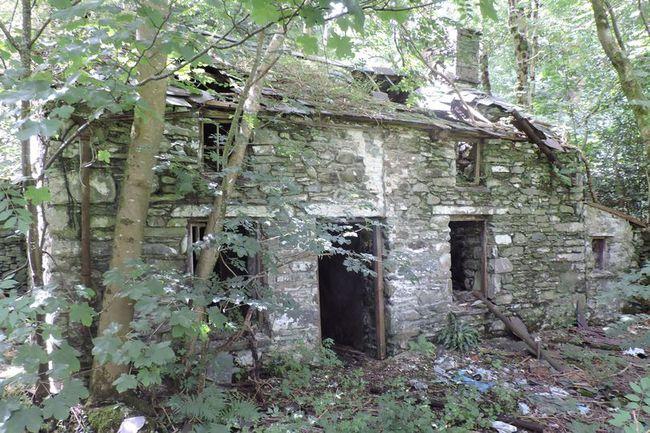 Bỏ ngoài tai lời khuyên can của gia đình, người phụ nữ chi 2 triệu đồng mua căn nhà cũ tồi tàn, không ngờ 20 năm sau tăng giá gần 8.000 lần - Ảnh 1.