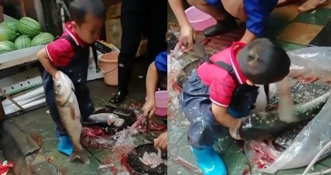 Hình ảnh cậu bé 7 tuổi ngồi giữa chợ sơ chế cá với tay nghề lão luyện gây tranh cãi dữ dội - Ảnh 2.