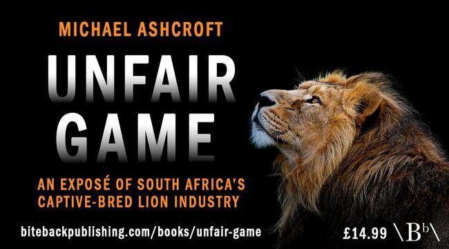 Số phận bi thảm của hổ, sư tử nuôi nhốt ở Nam Phi: 12.000 cá thể chờ chết phục vụ săn bắn mua vui và lấy xương cốt  - Ảnh 1.