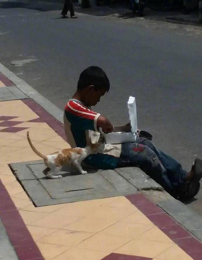 Cậu bé lem luốc ngồi bệt trên vỉa hè giữa trời nắng, tay bốc thức ăn nhưng lại có hành động cực đặc biệt với chú mèo lạ khiến bao người xúc động - Ảnh 2.