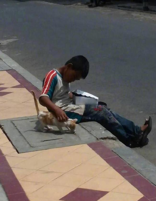 Cậu bé lem luốc ngồi bệt trên vỉa hè giữa trời nắng, tay bốc thức ăn nhưng lại có hành động cực đặc biệt với chú mèo lạ khiến bao người xúc động - Ảnh 3.
