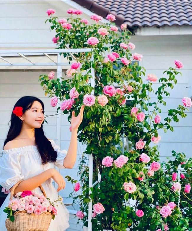 Sự thay đổi ngoại hình chóng mặt của nhóc tỳ nhà sao Việt: Con gái Trương Ngọc Ánh chân dài miên man, sốc nhất là vẻ sexy của ái nữ nhà Lưu Thiên Hương - Ảnh 5.