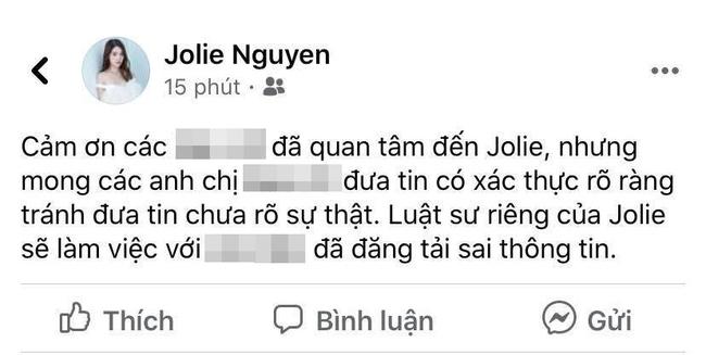 Hoa hậu Jolie Nguyễn chính thức lên tiếng về tin đồn liên quan đến đường dây mại dâm 30.000 USD - Ảnh 2.