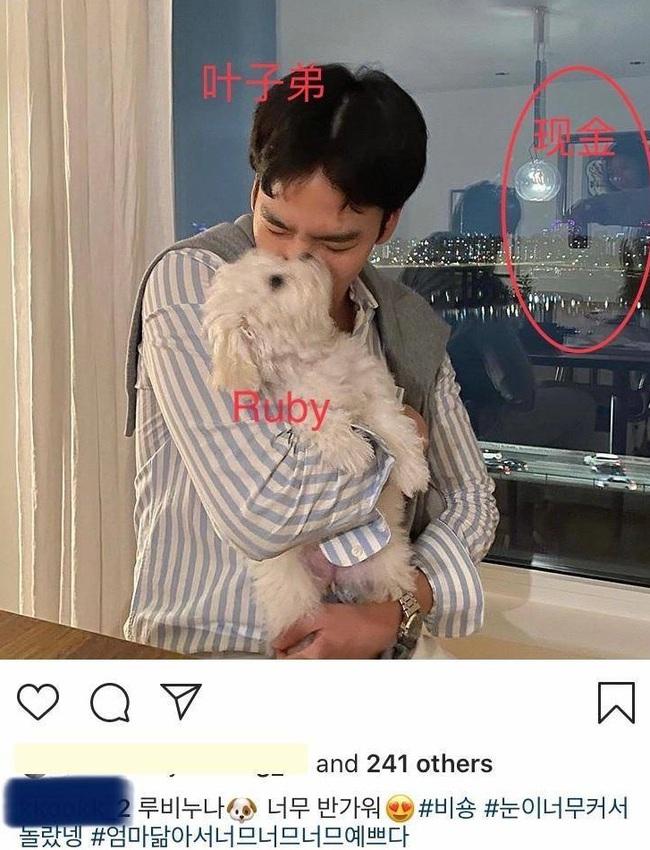 Dân tình tìm ra bằng chứng cho thấy bàn tay nựng thú cưng trong clip của Song Hye Kyo không phải Hyun Bin mà là từ chàng trai này? - Ảnh 2.