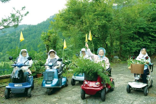 """Kỳ lạ nghề hái lá cây giúp """"hội chị em cao tuổi"""" Nhật Bản thu nhập hơn... 50 tỷ đồng/năm - Ảnh 6."""