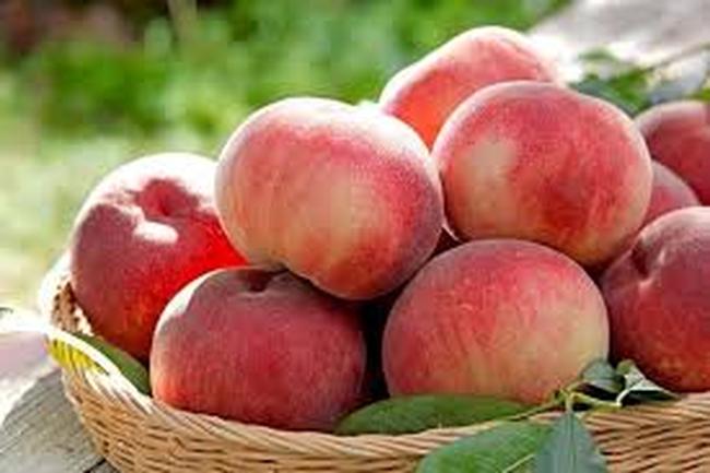 Chị em phụ nữ muốn có sức khỏe tốt, hãy thường xuyên ăn 4 loại rau quả này để dưỡng âm bổ thận, dưỡng huyết, dưỡng khí, tăng cường sức đề kháng và ngăn ngừa lão hoá - Ảnh 5.