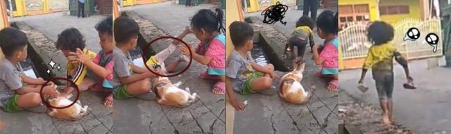 Chỉ vừa nưng chú mèo cưng của bạn thân mà cậu bé bị xô té xuống cống, hoảng hốt chạy một mạch về báo mẹ - Ảnh 1.
