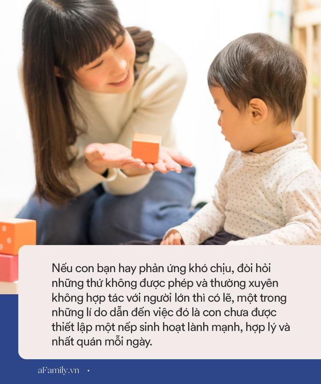Thiết lập nếp sinh hoạt lành mạnh cho con, cả gia đình sẽ nhận lại những lợi ích to lớn, nhưng nhiều phụ huynh lại hay nhầm lẫn điều này - Ảnh 1.