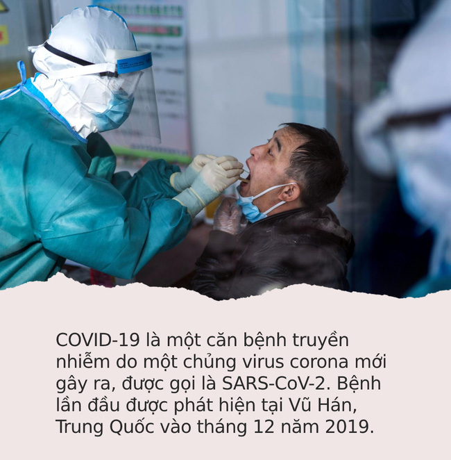 Đi chợ, rửa rau, giặt đồ mùa COVID-19: Cần thực hiện đúng theo những khuyến cáo này của WHO để bảo vệ gia đình khỏi sự lây lan của virus - Ảnh 1.