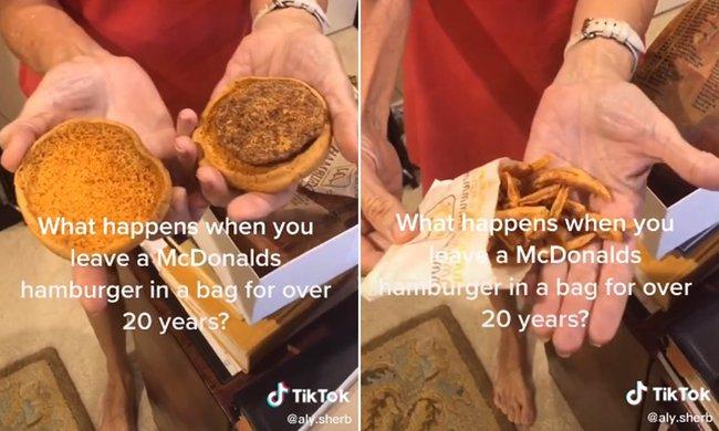 """Burger và khoai tây McDonald's 24 năm không hỏng khiến MXH xôn xao, hé lộ sự thật về """"tuổi thọ"""" của đồ ăn nhanh - Ảnh 2."""