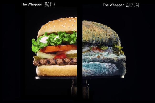 """Burger và khoai tây McDonald's 24 năm không hỏng khiến MXH xôn xao, hé lộ sự thật về """"tuổi thọ"""" của đồ ăn nhanh - Ảnh 7."""