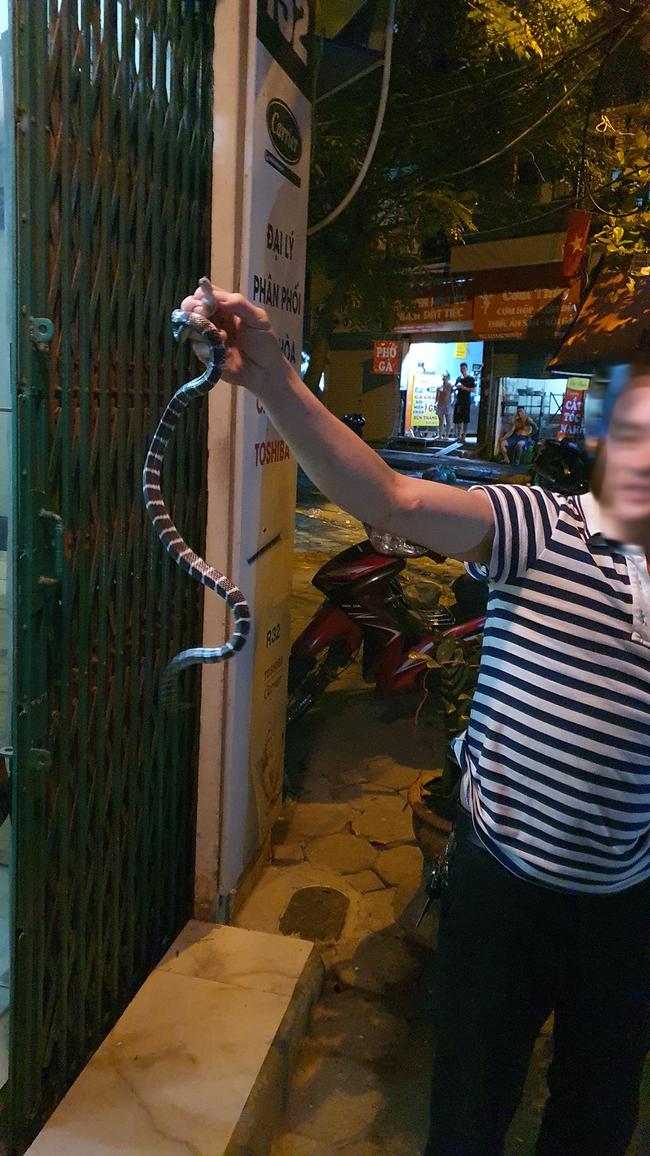 Hà Nội: Sáng đăng tin truy tìm danh tính của chiếc vỏ bé Na trong nhà, tối đến chính chủ đã tự nguyện lộ diện  - Ảnh 3.