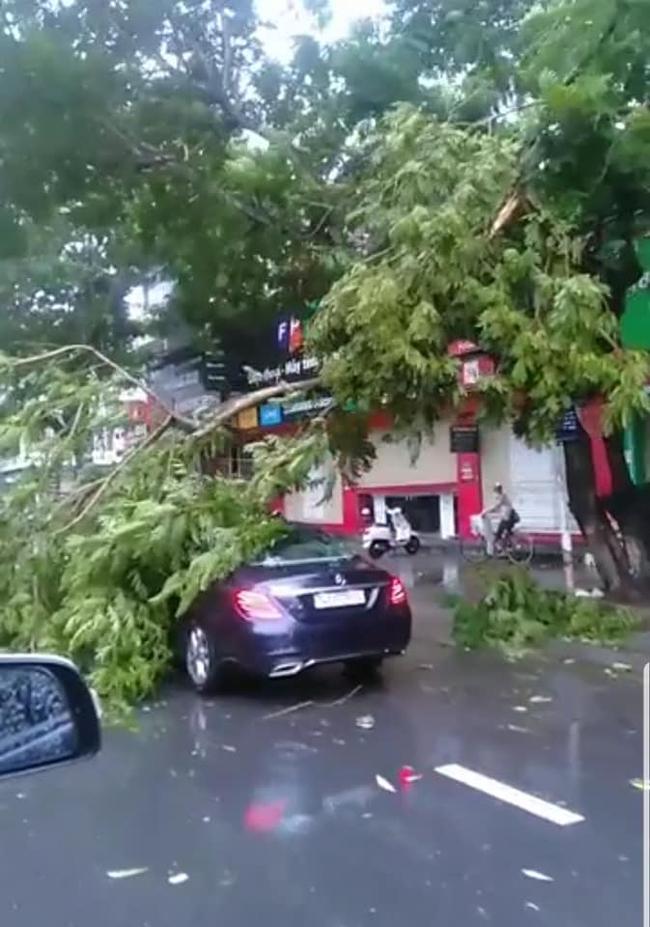 Các địa phương sau bão số 5: Nhiều nhà dân đổ sập hoàn toàn, hàng loạt xế hộp hư hỏng nặng - Ảnh 9.