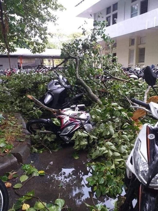 Các địa phương sau bão số 5: Nhiều nhà dân đổ sập hoàn toàn, hàng loạt xế hộp hư hỏng nặng - Ảnh 11.