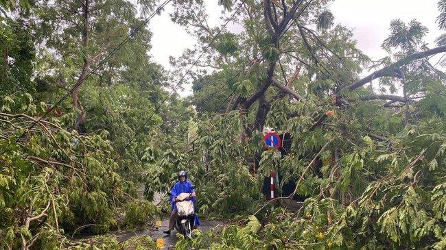 Các địa phương sau bão số 5: Nhiều nhà dân đổ sập hoàn toàn, hàng loạt xế hộp hư hỏng nặng - Ảnh 4.