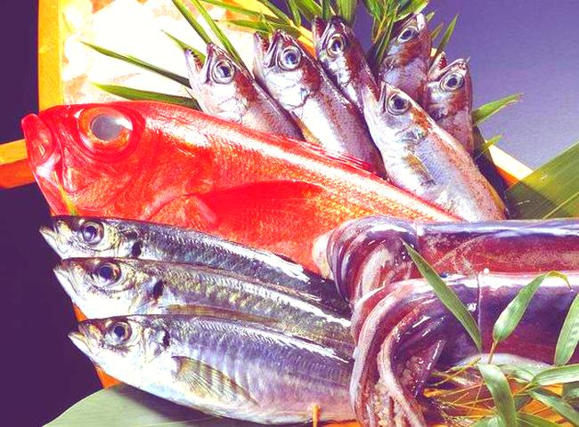 """Hai loại cá này là """"bể chứa"""" formaldehyde và kim loại nặng, cho dù rẻ đến mấy đi nữa cũng nên loại bỏ chúng khỏi bàn ăn - Ảnh 4."""