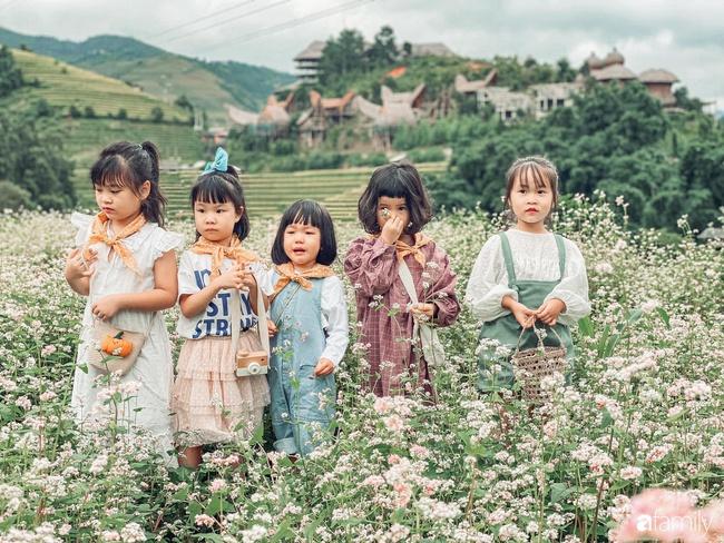 """Bộ ảnh """"nhà có 5 nàng tiên"""" rủ nhau lên Mù Cang Chải đẹp như tranh khiến người lớn cũng phải mê mệt - Ảnh 8."""