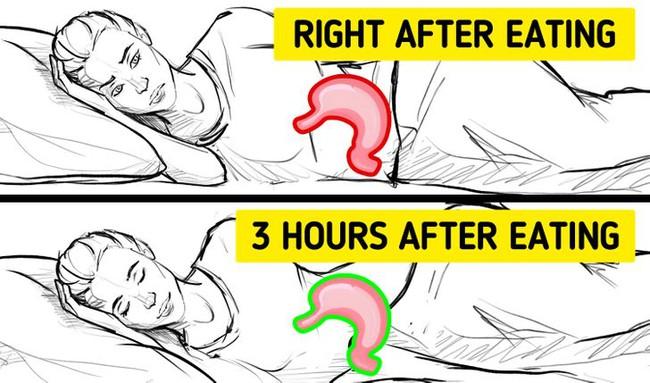 Điều gì xảy ra nếu bạn chợp mắt ngay sau khi ăn: Biết được rồi chắc chắn bạn sẽ cố thức chứ không dại gì mà nằm luôn xuống - Ảnh 2.