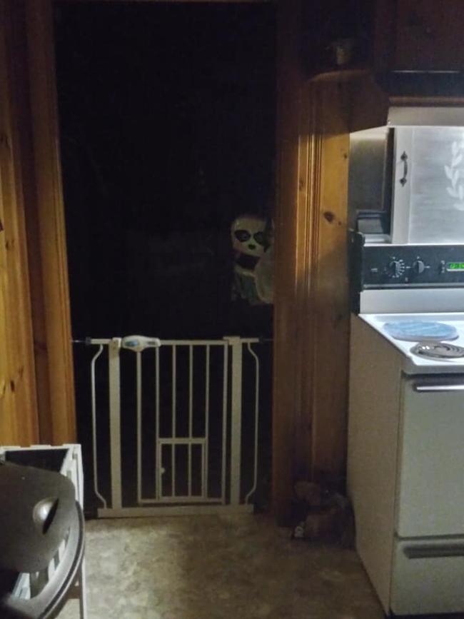 """Nửa đêm thức giấc lọ mọ vào bếp uống nước, người đàn ông """"rụng tim"""" bủn rủn chân tay vì ngỡ ma quỷ ghé thăm nhà, bật điện lên mới rõ ngọn ngành - Ảnh 1."""