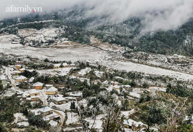 Sững sờ trước khung cảnh tuyết rơi phủ trắng đỉnh đồi Y Tý, du khách thích thú check in giữa trời trắng xóa - Ảnh 1.