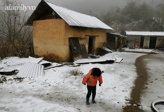 Sững sờ trước khung cảnh tuyết rơi phủ trắng đỉnh đồi Y Tý, du khách thích thú check in giữa trời trắng xóa - Ảnh 10.