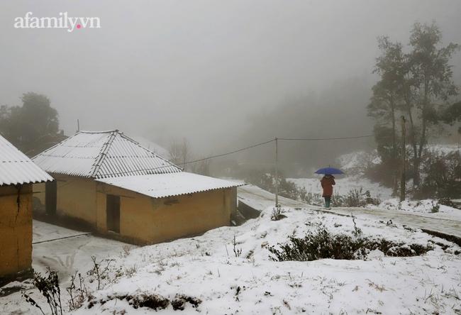 Sững sờ trước khung cảnh tuyết rơi phủ trắng đỉnh đồi Y Tý, du khách thích thú check in giữa trời trắng xóa - Ảnh 5.