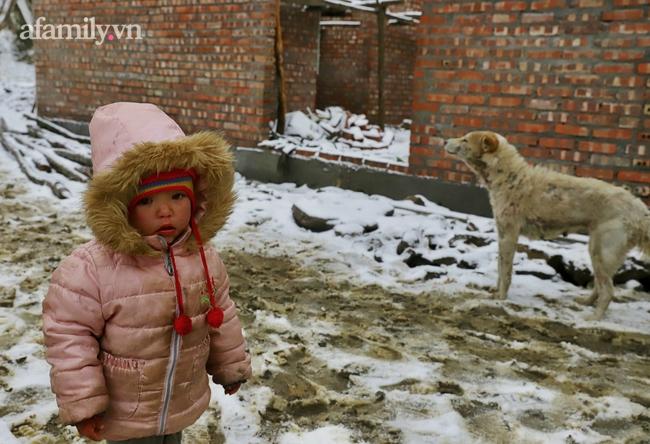 Sững sờ trước khung cảnh tuyết rơi phủ trắng đỉnh đồi Y Tý, du khách thích thú check in giữa trời trắng xóa - Ảnh 18.