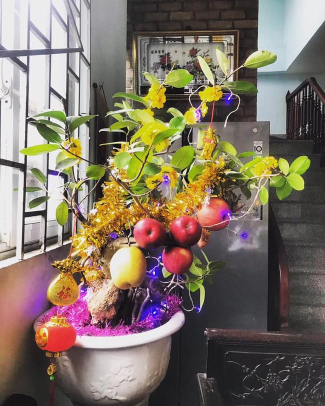 """Chán đào, quất ngày Tết, dân mạng """"đổi gió"""" sang chơi loạt cây bonsai chất lừ: Củ cải khổng lồ nở hoa tím biếc, táo lùn """"pha-ke"""" chi chít quả đỏ - Ảnh 14."""