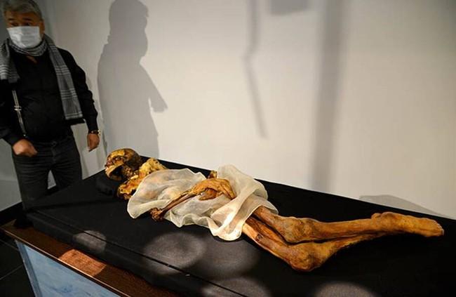Xác ướp công chúa 2.500 tuổi có hình xăm điệu nghệ rất giống hiện đại khiến khoa học bối rối, người dân cương quyết không cho công khai ảnh lên truyền thông với lý do khó hiểu - Ảnh 1.