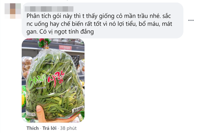 Góc hết hồn: Thanh niên đi siêu thị ở Hàn bỗng phát hiện loại cây cho trâu bò được bày bán, nhưng giá lại càng bất ngờ - Ảnh 4.