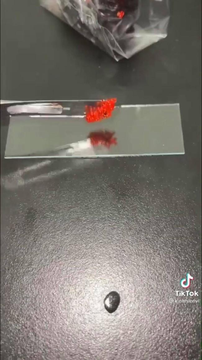 Xem clip soi trứng cá hồi sống dưới kính hiển vi, thứ hiện ra khiến ai nấy đều bất ngờ  - Ảnh 2.