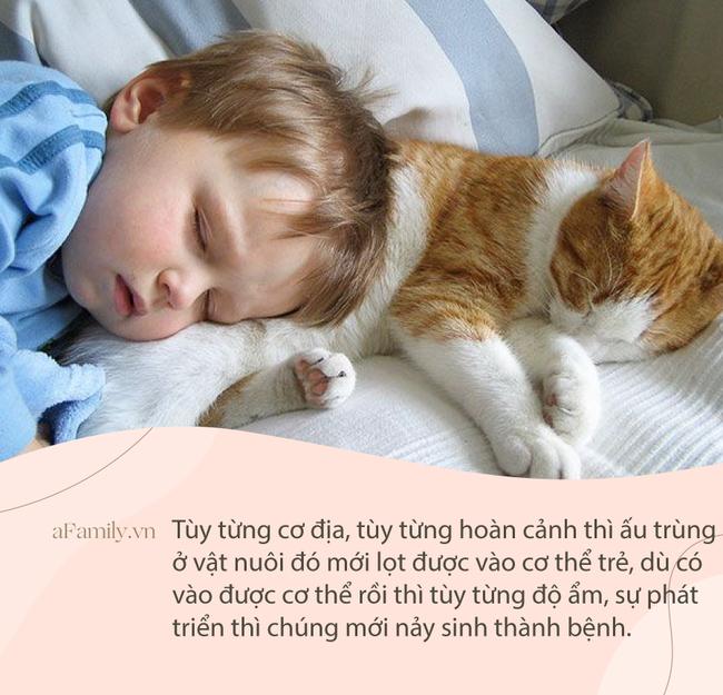 """Tranh cãi dữ dội về clip mèo ngủ cạnh bé sơ sinh nhưng CĐM vẫn khẳng định bị """"đốn tim"""" vì chi tiết đáng yêu này - Ảnh 3."""