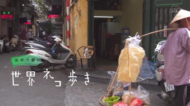 """Xuất hiện trên truyền hình Nhật Bản, những """"hoàng thượng"""" Việt Nam gây sốt bạn bè bốn phương - Ảnh 5."""