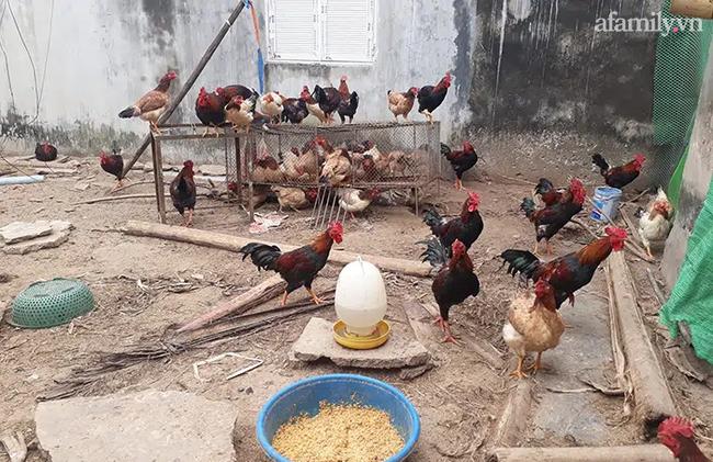 Cách chi tiêu Tết chỉ 3 triệu đồng của bà mẹ đơn thân ở Hà Nội: Đơn giản nhưng vẫn đầy đủ - Ảnh 4.