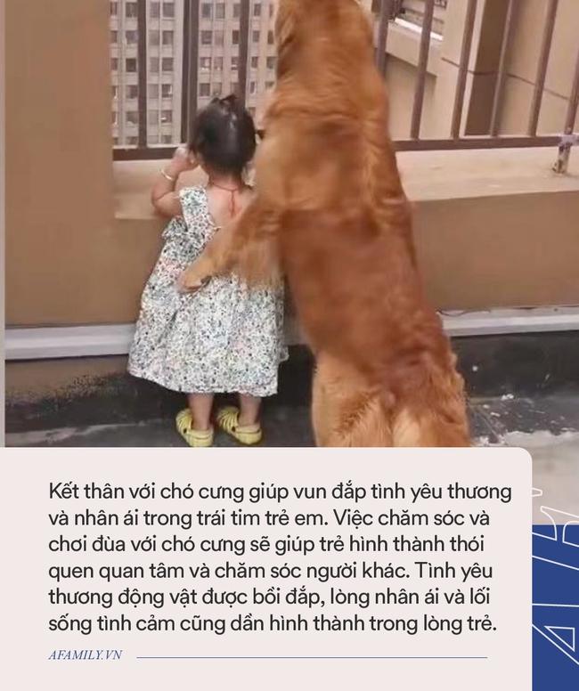 """Con trai nhỏ mắc lỗi bị bố giơ gậy dọa đánh, anh chưa kịp làm gì thì chú chó đã lao đến và có một hành động khiến người xem """"lịm tim"""" - Ảnh 5."""