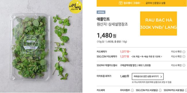 Biết là rau Việt Nam ở nước ngoài không rẻ, nhưng 80k chỉ mua được vài cây sả như ở Hàn thì hội chị em mê thịt xiên nướng sẽ phát khóc mất thôi! - Ảnh 6.