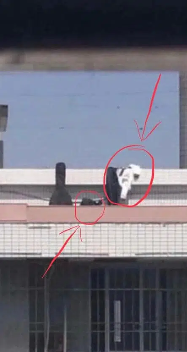 Đang đàn hát trên sân thượng, cặp đôi quay sang làm hành động 18+ ngay giữa ban ngày khiến ai cũng phải sốc! - Ảnh 3.