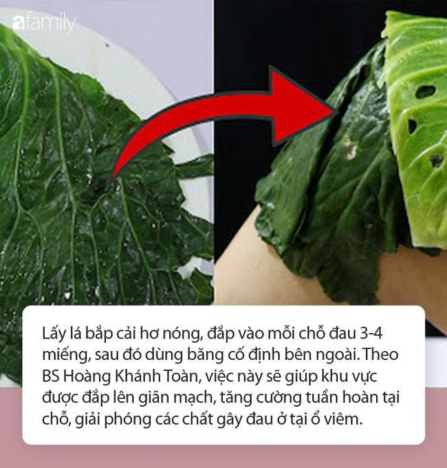 Loại rau được Đông y vô cùng trọng dụng, ăn hay đắp cũng phát huy chữa đau nhức xương khớp cực đỉnh, vào mùa đông càng không thể bỏ qua - Ảnh 4.