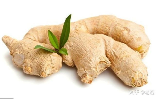 Trời rét đậm, ăn 7 loại thực phẩm để giữ ấm cơ thể, tăng cường dương khí và thúc đẩy tuần hoàn máu - Ảnh 2.