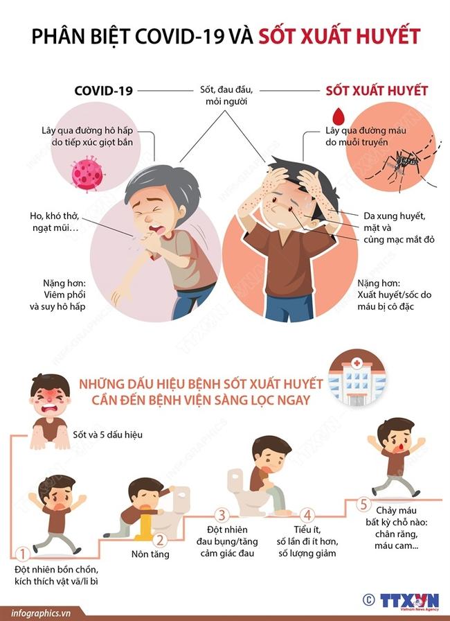 Phân biệt COVID-19 và sốt xuất huyết - Ảnh 1.