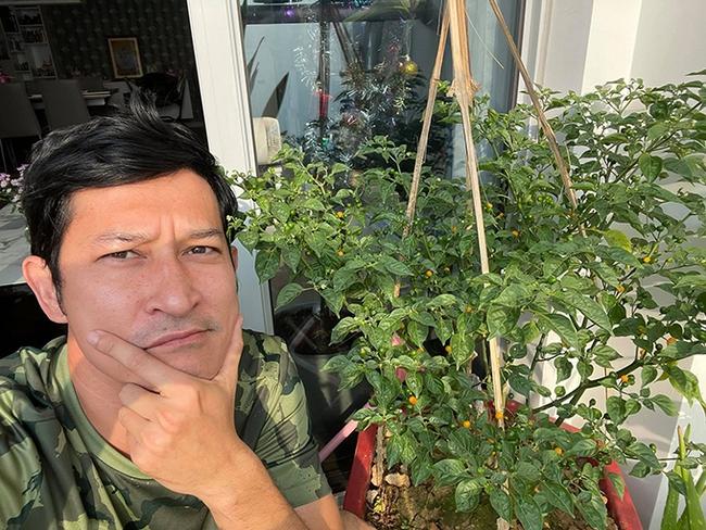 Cây ớt Peru có gì mà giá lên tới 550 triệu đồng/kg, hàng loạt sao Việt đua nhau mua về trưng Tết? - Ảnh 4.