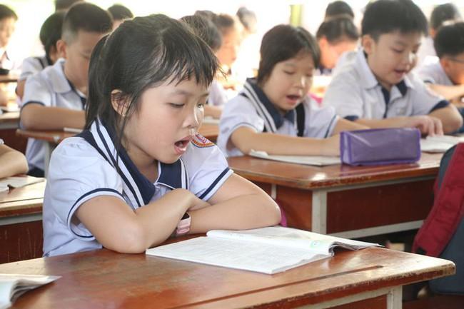Chi tiết lộ trình thay sách giáo khoa theo Chương trình Giáo dục phổ thông mới, phụ huynh cần phải nắm rõ - Ảnh 1.