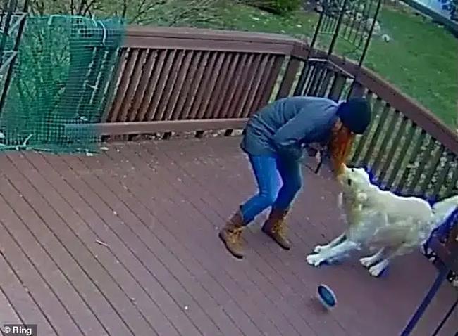 Khoảnh khắc chú chó giằng co áo kéo lê làm ngạt thở cô gái, ngỡ tai nạn đẫm máu kinh hoàng mà sự thật không như tất cả nghĩ - Ảnh 3.